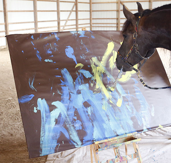 Justin the Artistic Horse to paint for Reins to Recovery