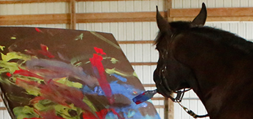 The Horse Who Paints Abstracts